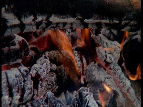 Wood fire with white embers