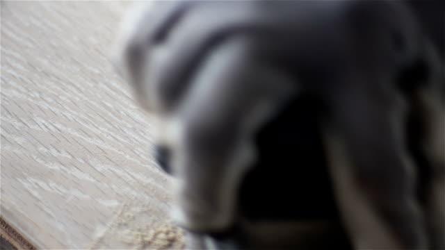 wood panel hand sanding - wooden floor stock videos & royalty-free footage