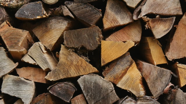 stockvideo's en b-roll-footage met wood pile - supersensorisch