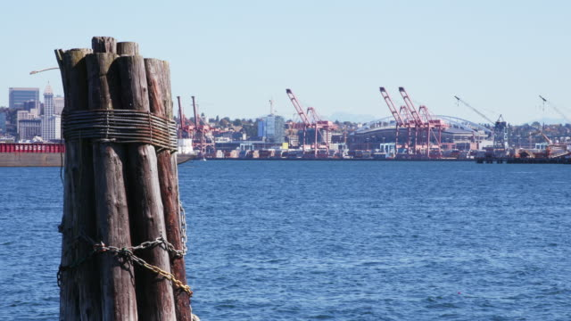wood pilings in water, cranes in background - nordpazifik stock-videos und b-roll-filmmaterial