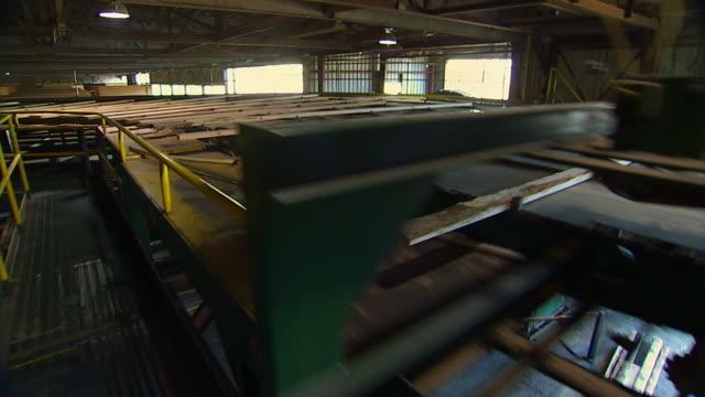 vidéos et rushes de ms, ds, wood planks moving on conveyor machine in lumber company, portland, oregon, usa - portland oregon
