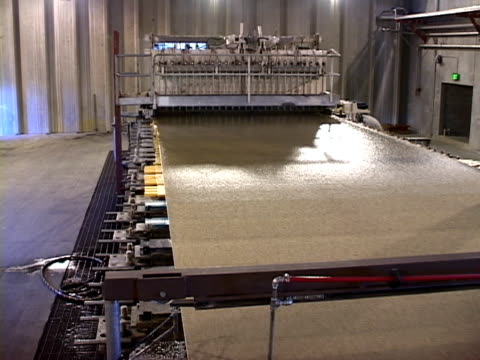 wood pulp spray - paper mill stock videos and b-roll footage