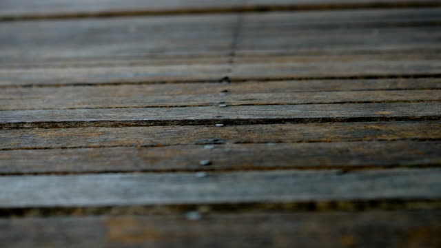 wood texture - wood material stock videos & royalty-free footage