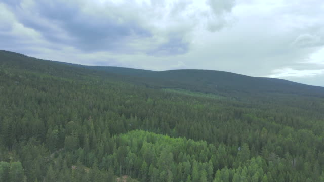 wooded area is seen on a mountain near szklarska poreba, poland on august 23, 2020. the village situated near the polish section of the giant... - {{asset.href}} stock-videos und b-roll-filmmaterial