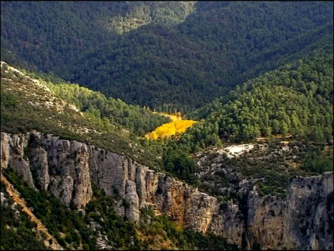 wooded valley with rocky outcrop, yellow autumn colour, autumn, parque natural los alcornocales, andalusia, southern spain - parque natural stock videos and b-roll footage
