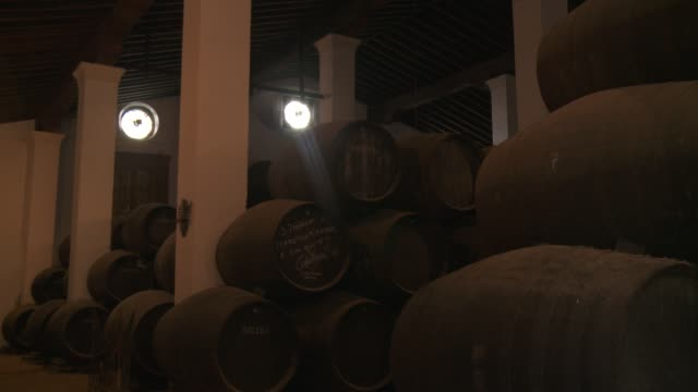 wooden barrels are stacked in a cellar in andalusia. - wine cellar stock videos and b-roll footage