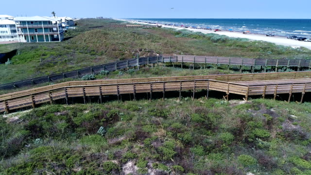 wooden boardwalk crossing wetlands and sand dunes on padre island a vacation travel destination along the texas gulf coast - corpus christi texas stock videos & royalty-free footage