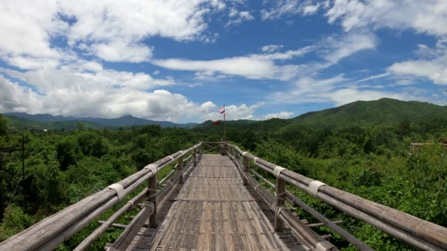 wooden bridge on canopy tree in forest - tree canopy stock videos & royalty-free footage