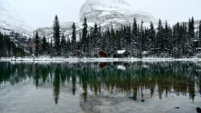 wooden cabins hiding in the forest on lake o'hara at yoho national park - mystery stock videos & royalty-free footage