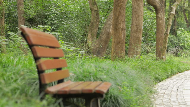 wooden chairs in park - stool stock videos & royalty-free footage