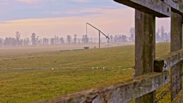 ds wooden fence around the pasture - trough stock videos & royalty-free footage