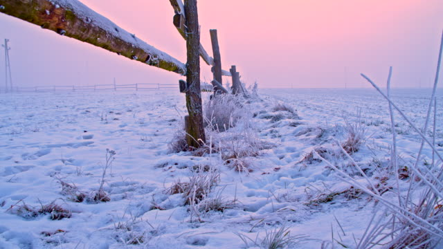WS DS Wooden Fence At The Field In Snow