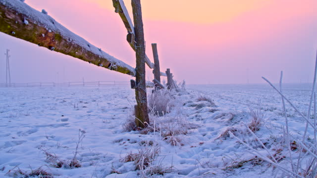 WS DS Wooden Fence Covered In Frost