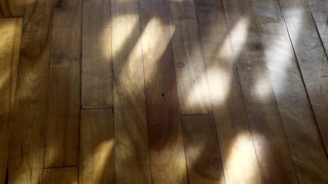 wooden floor with shadows of the wind moving curtains in living room 4k video - shadow stock videos & royalty-free footage