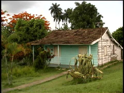 ms, wooden house, cuba  - fan palm tree stock videos & royalty-free footage