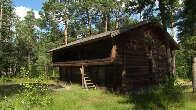 wooden house in forest - shack stock videos & royalty-free footage