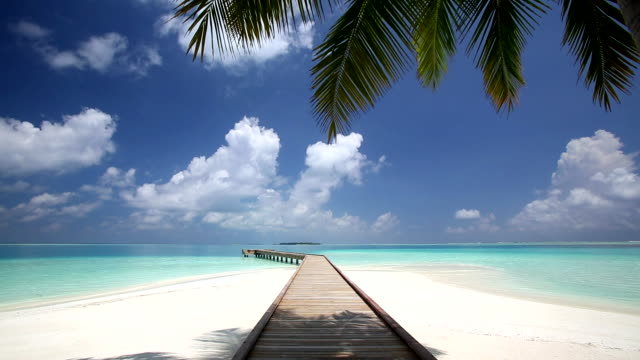 Wooden jetty out to tropical sea, Maldives, Indian Ocean