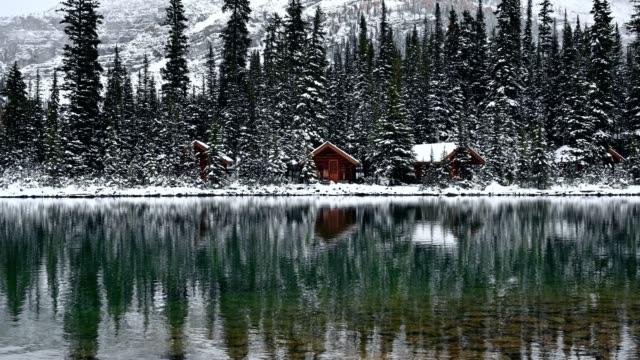 wooden lodge in pine forest with snowing reflection on lake o'hara at yoho national park - log cabin stock videos & royalty-free footage