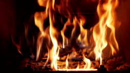 Wooden Logs Burning in Fireplace (Full HD)