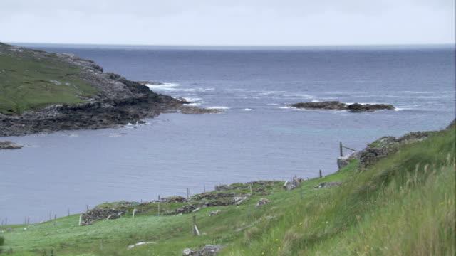 wooden posts line a grassy scottish coast. available in hd. - isole ebridi video stock e b–roll