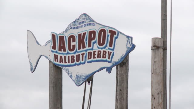 """wooden sign by homer chamber of commerce in shape of halibut reading """"jackpot halibut derby"""", homer spit, homer, kenai peninsula, alaska."" - pesce piatto video stock e b–roll"