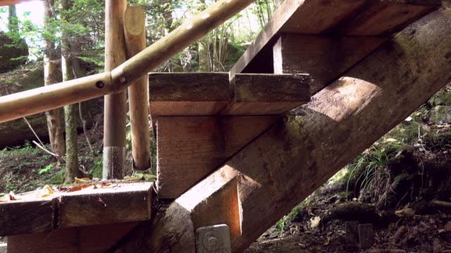 vídeos de stock, filmes e b-roll de escada de madeira - colina acima