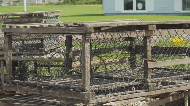 vídeos y material grabado en eventos de stock de wooden trap with strings to catch lobsters - grupo mediano de objetos