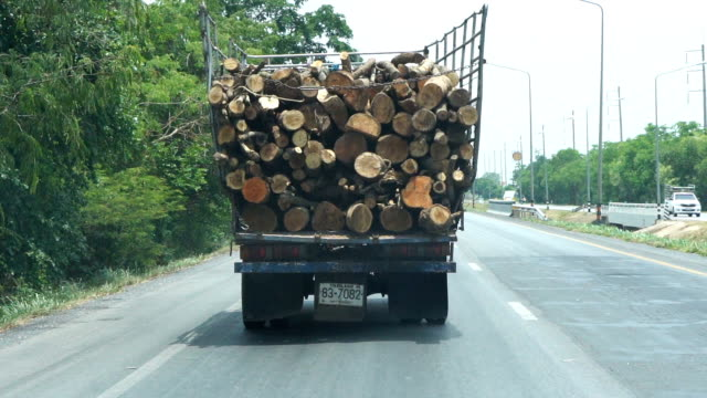 a wooden truck on the road - timber stock videos & royalty-free footage