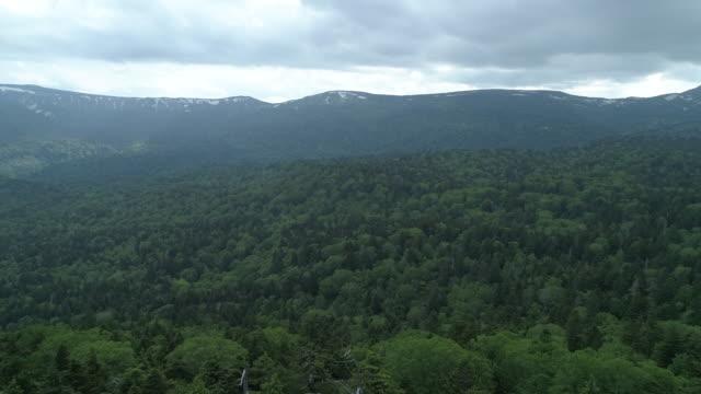 woodland mountain landscape in towada hachimantai national park, wide aerial - 秋田県点の映像素材/bロール