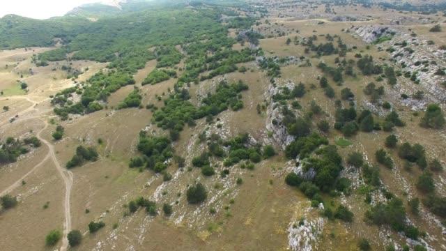 antenne: woodland auf felsigen hügeln - ukraine stock-videos und b-roll-filmmaterial