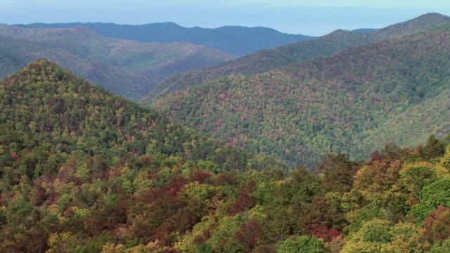 T/L, WS, Woods in Fall colors, Great Smoky Mountains National Park, North Carolina, USA