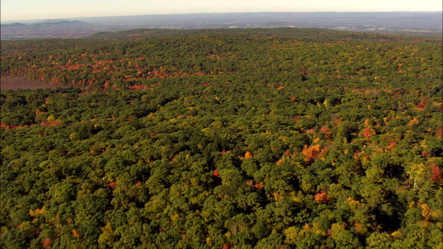Woods In Fall Near Amherst  - Aerial View - Massachusetts,  Franklin County,  United States