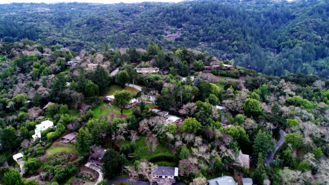 Woods of Silicon Valley, aerial view