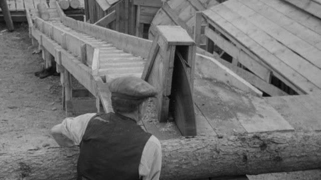 MONTAGE Woodsmen operating circular saws to cut timber, then stacking, loading and transporting it / United Kingdom