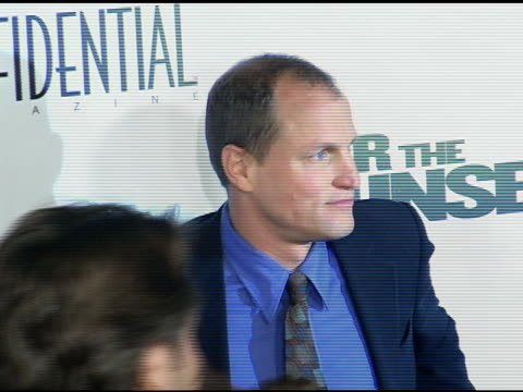 woody harrelson and jason binn at the 'after the sunset' premiere at grauman's chinese theatre in hollywood, california on november 4, 2004. - woody harrelson stock-videos und b-roll-filmmaterial