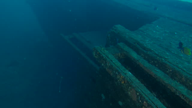 woody ship wrecked undersea - shipwreck stock videos and b-roll footage