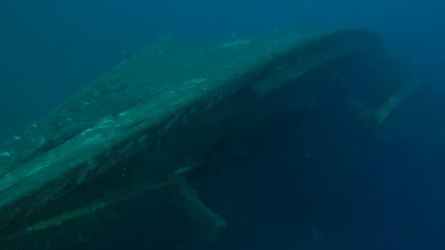 stockvideo's en b-roll-footage met woody wrak onderzeese - scheepswrak