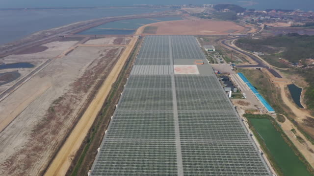 wooilfarm co glass greenhouses stand in this aerial photograph taken above hwaseong gyeonggi province south korea on friday may 10 2019 - kyonggi do province stock videos and b-roll footage