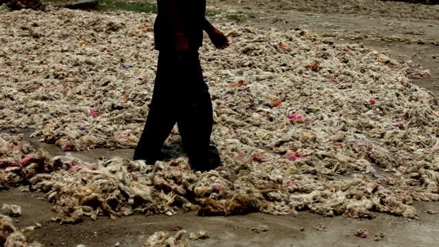 stockvideo's en b-roll-footage met wol (dierlijk bont) drogen in direct zonlicht - textielindustrie