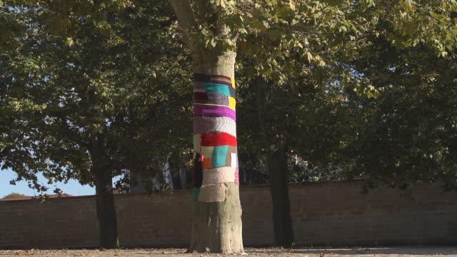 woolen scarf on a Tree