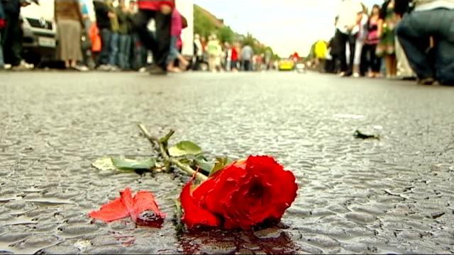 wootton bassett repatriation tradition ends single red rose lying on wet road - single rose stock videos & royalty-free footage