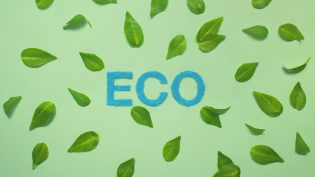 "word ""eco"" made with blue colored glitter and surounded by leaves, exploding towards camera and becoming defocused on pastel green background, glittering bokeh - economia video stock e b–roll"