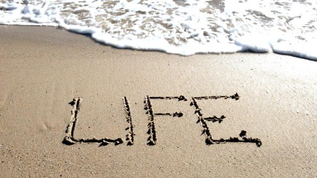 word 'Life'