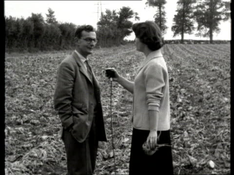 work and industry clip reel: part 1; tx 8.10.1957 harvesting: b/w harvesting of sugar beet / farmer interview sot - b rolle stock-videos und b-roll-filmmaterial