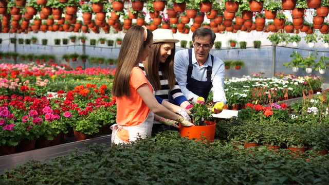 work and pleasure at the same time - gardening glove stock videos & royalty-free footage