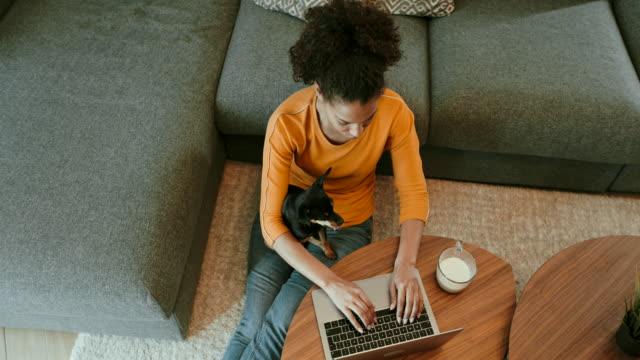 vídeos de stock, filmes e b-roll de trabalhar em casa - laptop