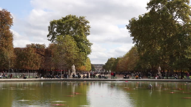 """work of art by arist noel dolla called 'nympheas post deluge ii' is seen at the jardin des tuilleries as part of """"fiac hors les murs"""" 2019 on... - knochen im beckenbereich stock-videos und b-roll-filmmaterial"""