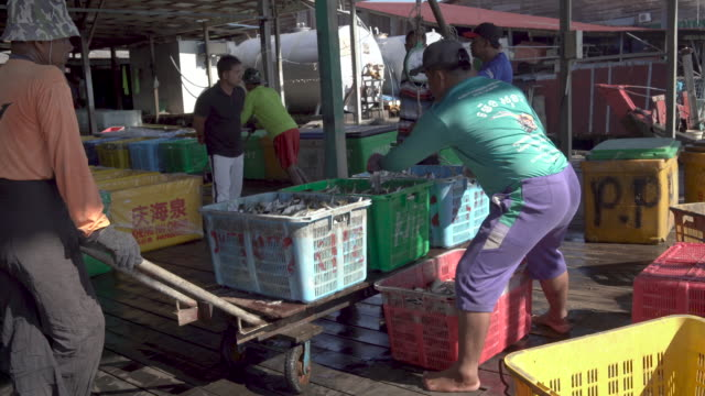 worker at fishing market - fisherman stock videos & royalty-free footage