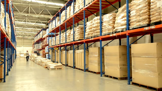 Worker Checking Inventory In Warehouse