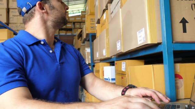 worker checking stock for shipping to customer - examining stock videos & royalty-free footage